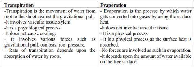 NCERT Solutions for Class 11 Biology chapter 11 Transport in Plants PDF Image 2