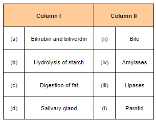 NCERT Solutions for Class 11 Biology chapter 16 Digestion and Absorption PDF Image 2