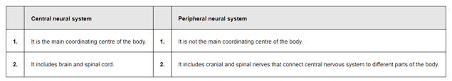 NCERT Solutions for Class 11 Biology chapter 21 Neural Control and Coordination PDF Image 1