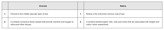 NCERT Solutions for Class 11 Biology chapter 21 Neural Control and Coordination PDF Image 3