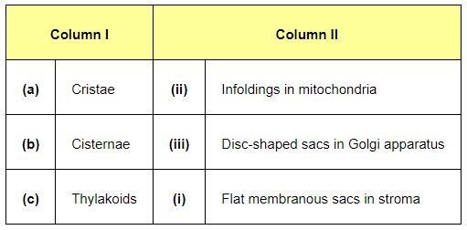 NCERT Solutions for Class 11 Biology chapter 8 Cell The Unit of Life PDF Image 1