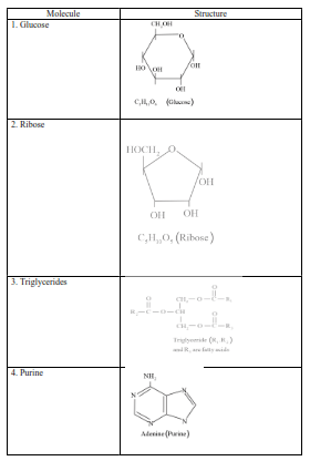 NCERT Solutions for Class 11 Biology chapter 9 Biomolecules PDF Image 4