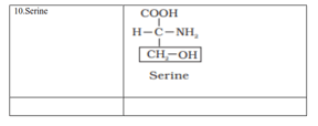 NCERT Solutions for Class 11 Biology chapter 9 Biomolecules PDF Image 6