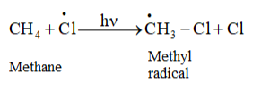 NCERT Solutions for Class 11 Chemistry chapter 13 Hydrocarbons PDF Image 2