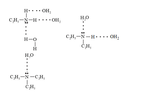 NCERT Solutions for Class 12 Chemistry Chapter 13 Amines PDF Image 12
