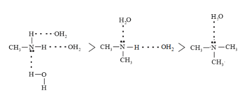 NCERT Solutions for Class 12 Chemistry Chapter 13 Amines PDF Image 13