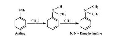 NCERT Solutions for Class 12 Chemistry Chapter 13 Amines PDF Image 14