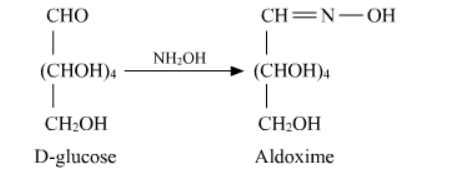 NCERT Solutions for Class 12 Chemistry Chapter 14 Biomolecules PDF Image 5