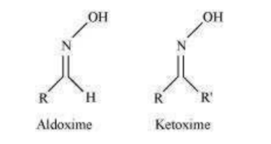 NCERT Solutions for Class 12 Chemistry Chapter 12 Aldehydes Ketones and Carboxylic Acids PDF Image 9