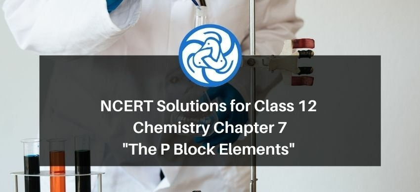 NCERT Solutions for Class 12 Chemistry Chapter 7