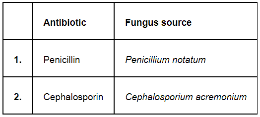 NCERT Solutions for Class 12 Biology Chapter 10 Microbes in Human Welfare PDF Image 1